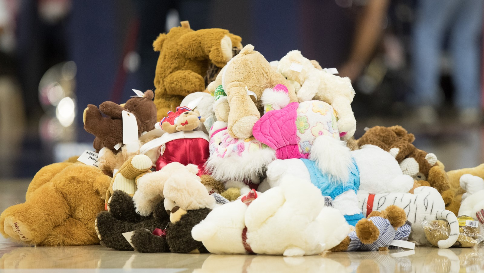 Women s Hoops to Host Second Annual Teddy Bear Toss - University of ... b67fd0e45f